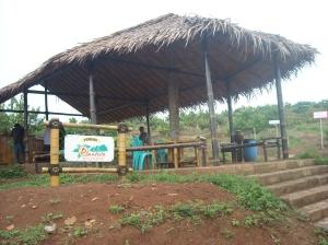 gazebo di tengah kebun, tempat yang sejuk untuk menikmati buah-buahan segar di alam